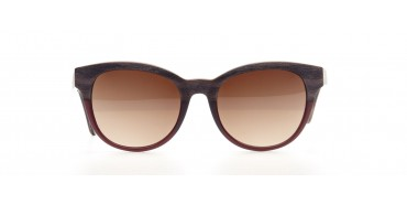Alan Blank Sunglasses A14517 Alan Blank Sunglasses A14517