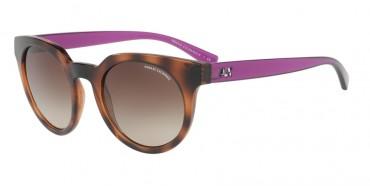 Exchange Armani Sunglasses Exchange Armani Sunglasses 0AX4062S