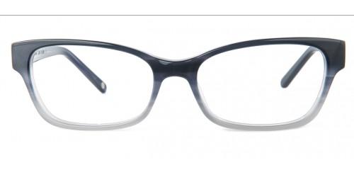 Alan Blank Eyeglasses Norton