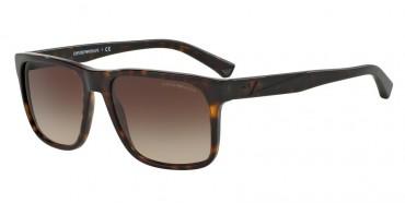 Emporio Armani Sunglasses Emporio Armani Sunglasses 0EA4071F