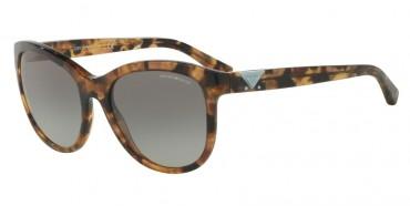 Emporio Armani Sunglasses Emporio Armani Sunglasses 0EA4076F