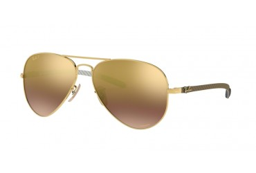 Ray-Ban 0RB8317CH